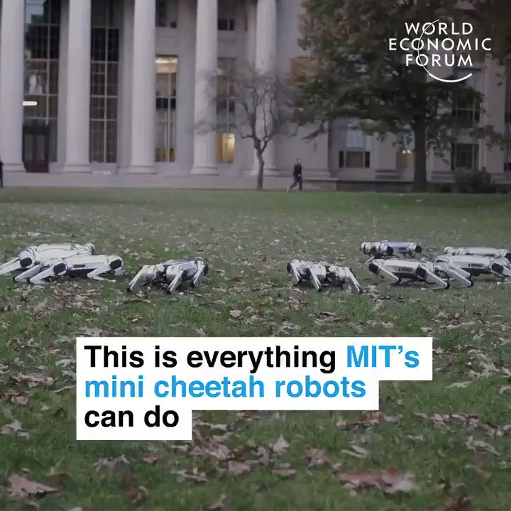 They're the first four-legged robots to be able to perform a full 360° backflip #robotics #technology #Robotics #AI #Automation #robots #MachineLearning 📽 via @wef https://t.co/3hIex3M00i