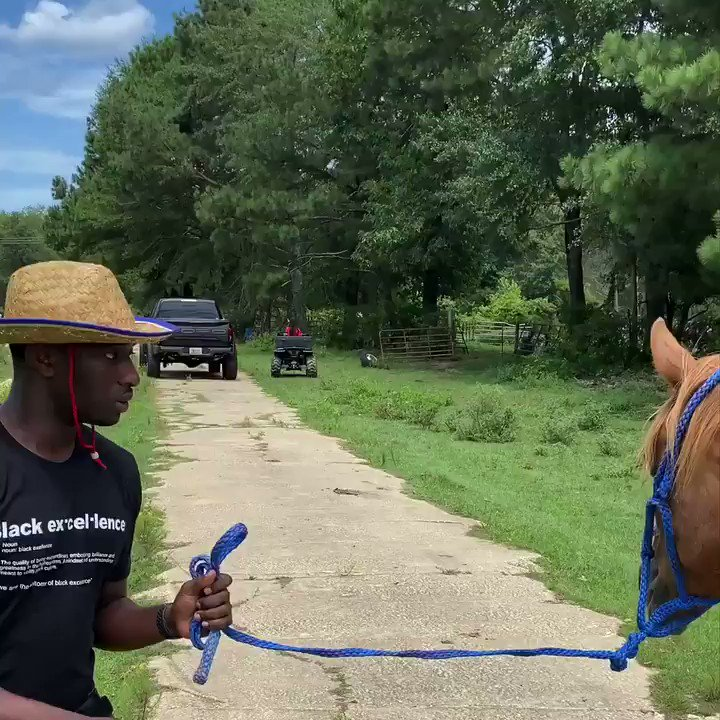 😂 How hood dudes be when they about to ride a horse for the first time!😂🐎