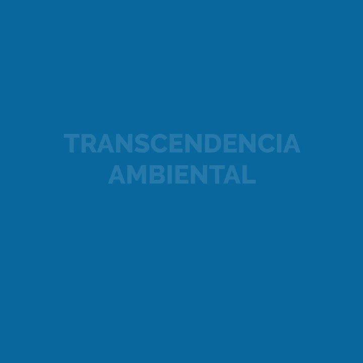 Renace, comprometido con el cuidado del medio ambiente, implementa programas medioambientales, que buscan la recuperación y conservación de la flora y fauna de San Pedro Carchá. #CompromisoAmbiental https://t.co/7LRv0zc6sV