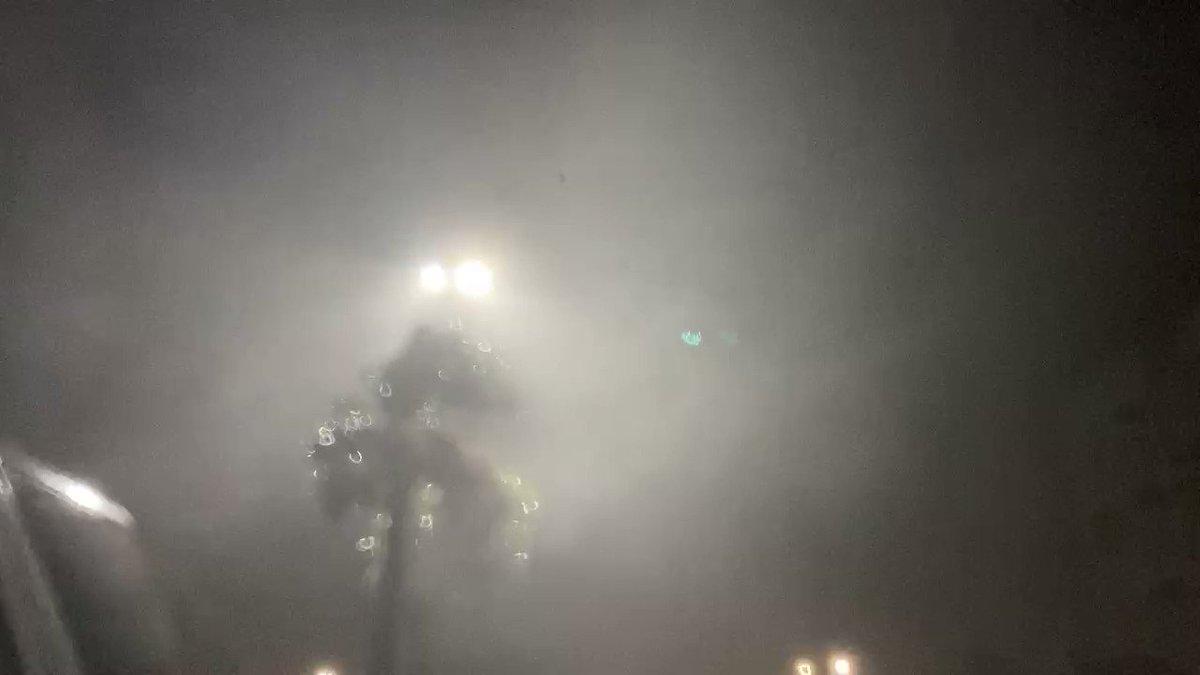 @RobMarciano's photo on #HurricaneIsaias