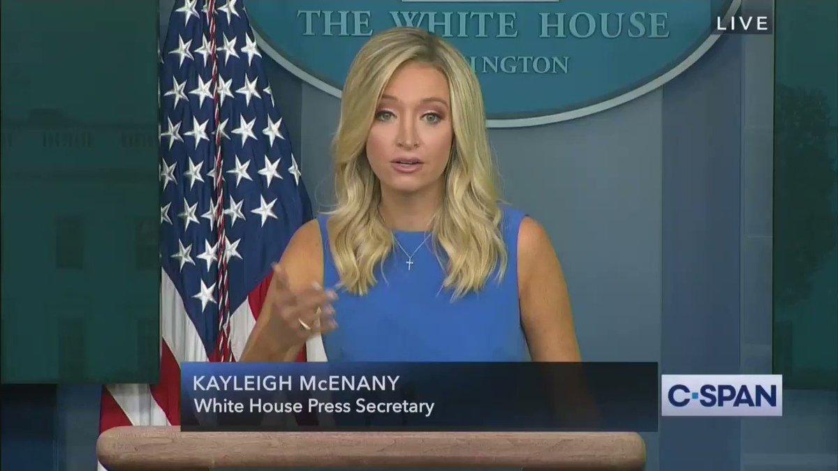 Press Secretary Kayleigh McEnany Rips ABC News Reporter