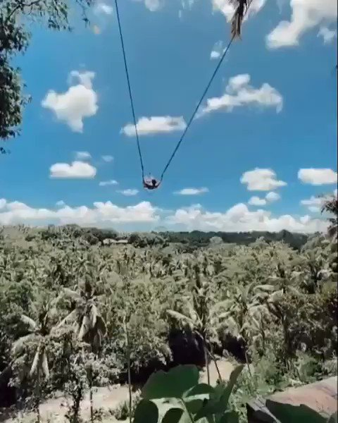 Extreme swinging in Bali, Indonesia #beautifuldestinations #NaturePhotography #Wonderful   boris_kuzinpic.twitter.com/n2fw9eLpmU