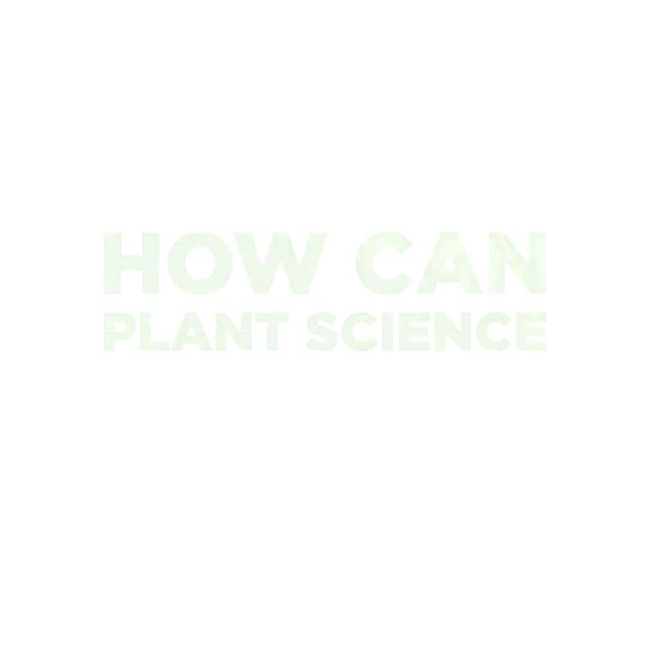 On World Food Safety Day, @WHO put out five calls to action on food safety to ensure that governments, food producers, and the entire supply chain are prioritizing food safety. Check out our GIFs to find out how plant science accomplishes this.  https://t.co/KbWgTLhs4t https://t.co/bIlUoD7MyG