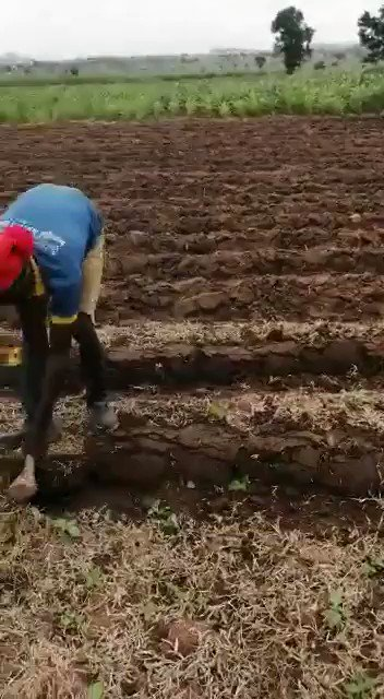 Small holder farmers produce over 80% of the food in Nigeria. Without access to mechanization and technology it's a tough job! https://t.co/vX4im8Eg3t
