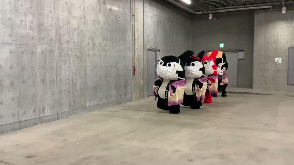 もうすぐ入場ゲートオープンの時間🏟ぼくらも出番だがね✨#松永製菓 さんからもらった #しるこサンド 法被で登場だがね🎶🎶#grampus