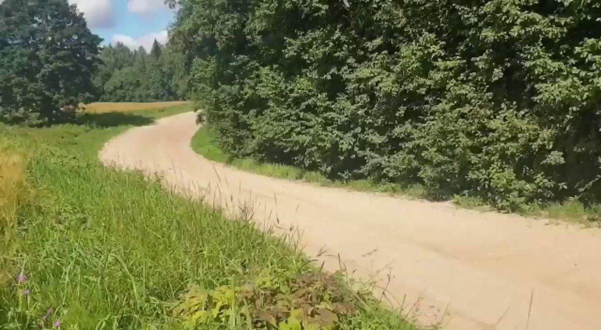 昨日のエストニアテスト動画🇪🇪エストニアもフィンランドと同じく高速ステージのラリーですが、フィンランドに比べ路面が少しソフトで轍が出来やすいので、どんなラリーになるのか楽しみです!Test video clips from yesterday.Next ➡️ 4-6 September @RallyEstonia 🇪🇪 #TK18 @TGR_WRC