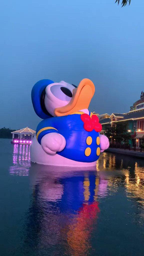 Thor must do sth to Disney Duck  last night  #ShanghaiDisneyland  #SHDL #上海ディズニーランド #Disney #Disneypark #Disneylandpic.twitter.com/PTOIMl1my5
