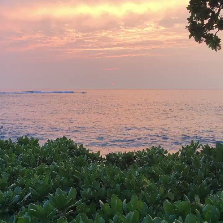Paradise found 🌺  #FairmontOrchid #Hawaii #OnlyAtTheOrchid #HawaiiIsland #Aloha #Paradise #AlohaFriday #Fairmont #FairmontHotels #Sunset #OceanLove #HawaiiLife https://t.co/zKJ9hYWlER