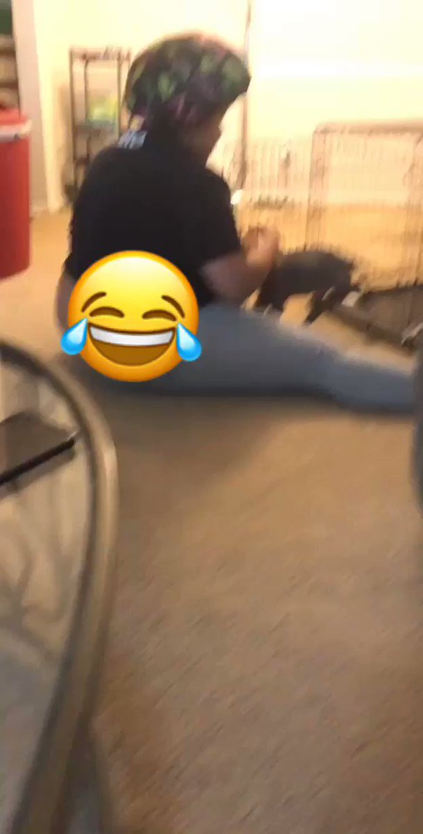 """Y'all 😂😂😂 please listen to how my best friend is disciplining the dog 😂😂🤣🤦🏽♀️ It was the """"Hello Nigga"""" for me!"""