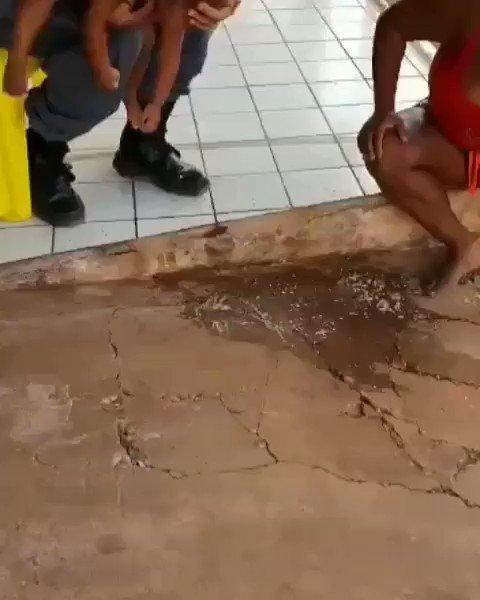 Parabéns ao Sargento Lopes, que salvou uma criança de 1 ano que havia se afogado na piscina em Caxias-MA. https://t.co/C5djLBiHHR