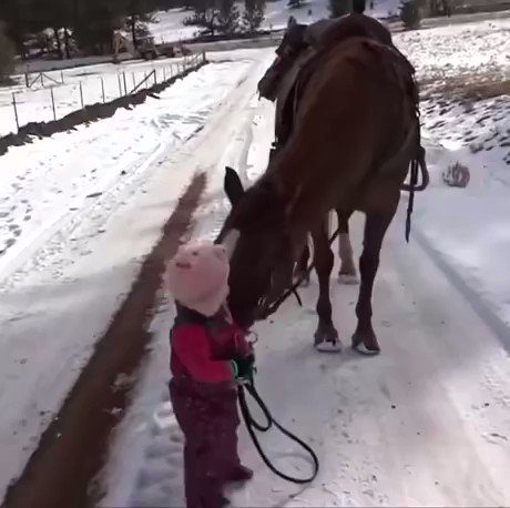 Morning Patriots~🇺🇸 ADORABLE little Emma is being taught how to properly walk Cinnamon. Children are amazing!  Train up a child in the way he should go; even when he is old he will not depart from it. Prov 22:6  Have an awesome day!🌼  https://t.co/oTvPr6MZXu