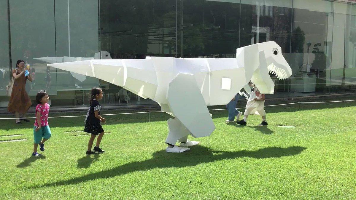金沢21世紀美術館の周りを散歩するシロ。子どもたちに大人気。
