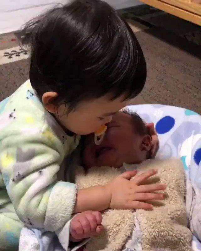 心が浄化される。弟が泣いてると優しくポンポン…また1歳半のちいさなお姉ちゃん。赤ちゃん泣き止み親が泣く…