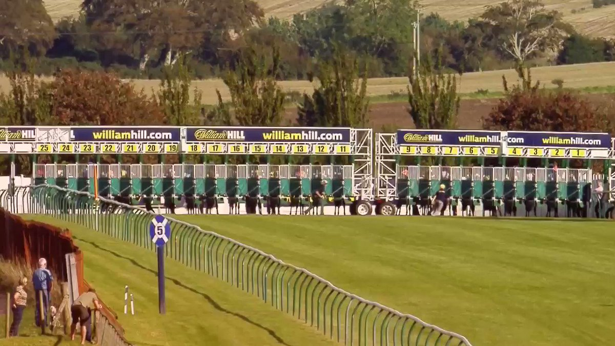 Day 2 @ayrracecourse I have 8 rides teaming back up with #MusicSociety in the #BronzeCup 🏆for @EasterbyTim at 3.55pm #Hearmeroar #QueensGift #Mustaqbal @mdodsracing #Nastase @Mick_Channon #RolfeRemembrandt @MichaelScu #ElysianFlame @MickEasterby +#Merricourt @jardineracing 🍀🐎