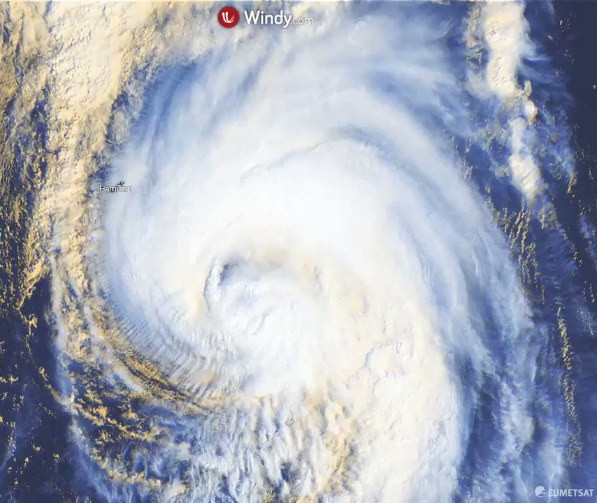 Image for the Tweet beginning: #HurricaneTeddy at 19 UTC seems