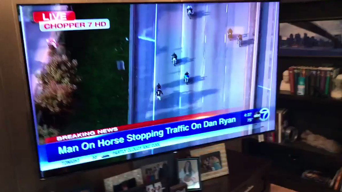 There's a man riding a horse disrupting traffic on a major Chicago expressway.