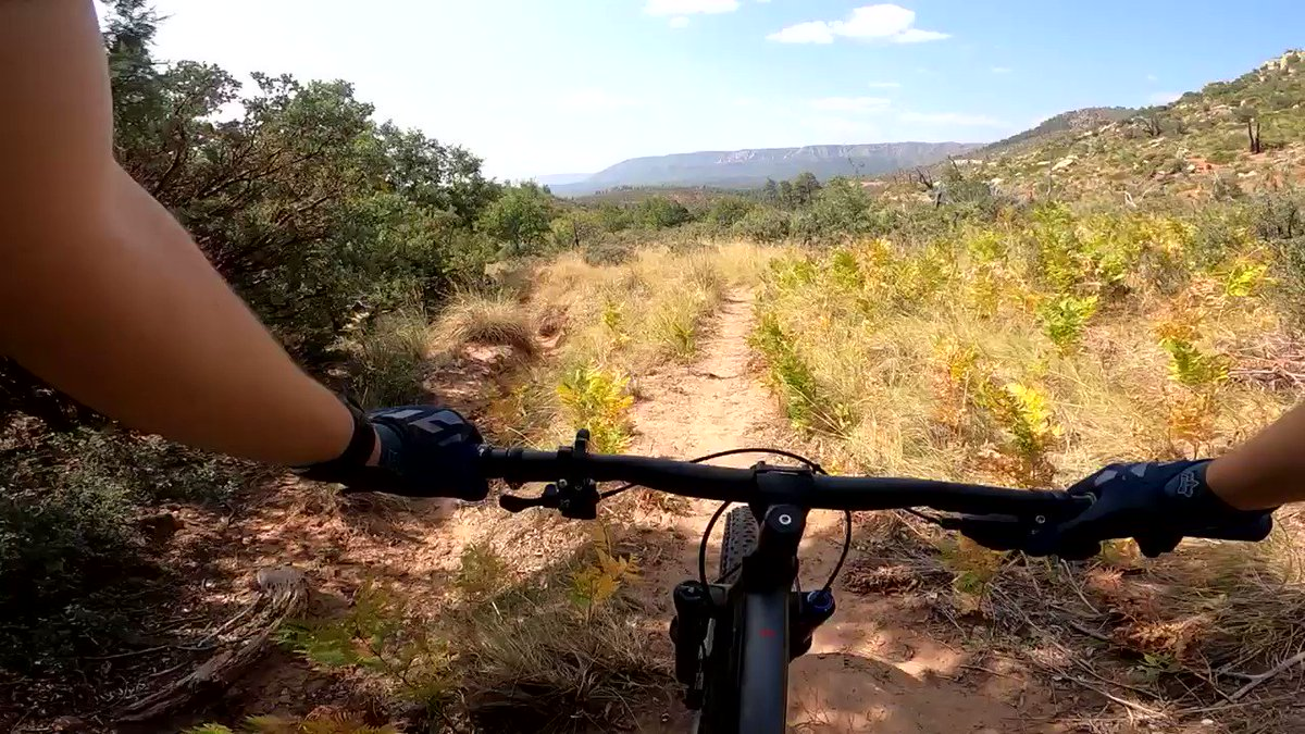 Zoom zoom #MTB #mountainbiking #recoveryride #cycling