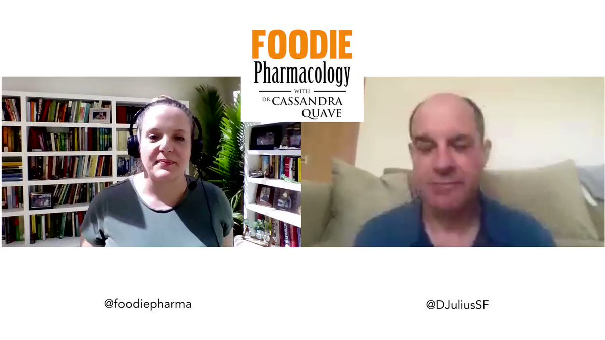 New on #FoodiePharmacology! The taste of pain! Solving the puzzle of pain receptors w/ @DJuliusSF . How many of you love hot sauce? What makes chili peppers so alluring to our palates? It has a lot to do with pain & how our bodies react to #naturalproducts like #capsaicin. 1/3
