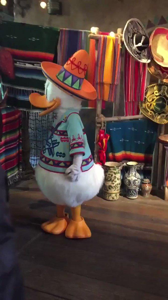 ウォルトの仮装でロストリバーデルタまでドナルドに会いに行った。二度見する所も無理やり足を組む所も えみりん並みのテンションなお姉さんも全部好き^_^