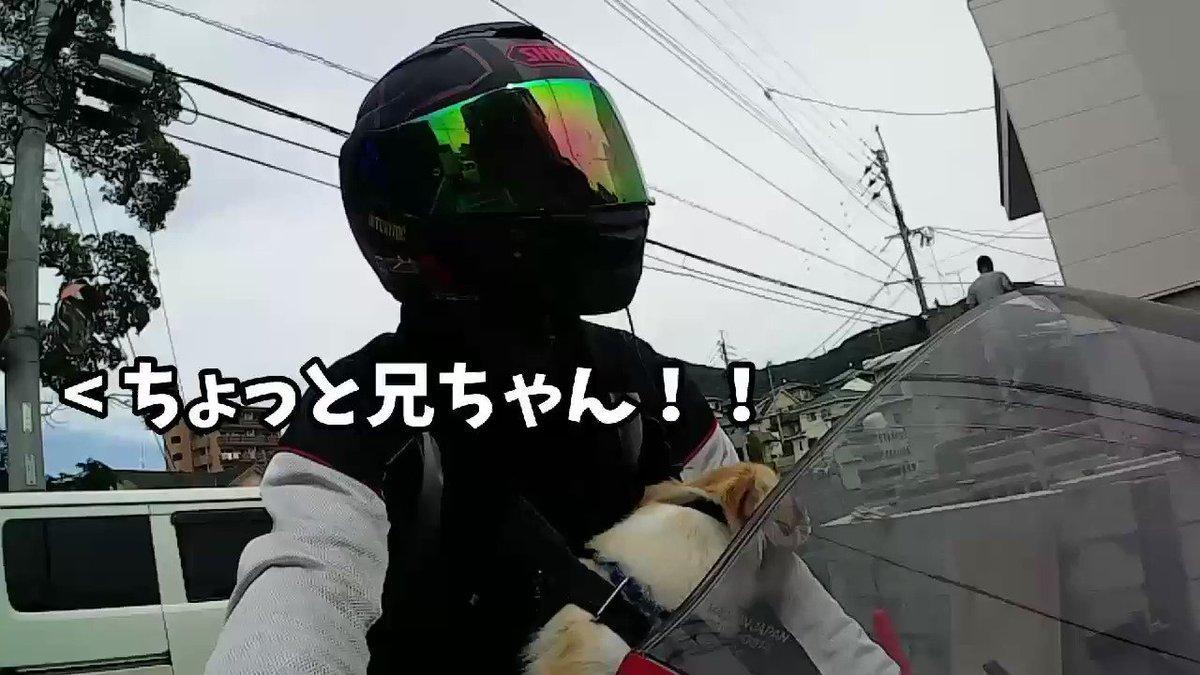 ワンデムで志賀島へ向かっていると仕事中の職人さん「ちょっと待てぇ!!!」
