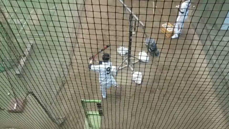 ジャイアンツ球場左脚内転筋違和感で昨日登録抹消の亀井善行選手バット振ってます