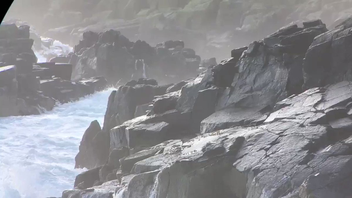I do like the power of the North Sea as it crashes into the Isle of May, always impressive to watch https://t.co/qGX7HQFFrs