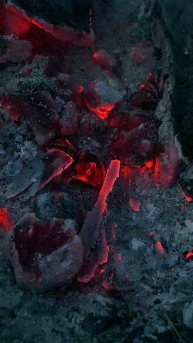 【スタッフ日記】ボーッと見ていられます☺️コヤシゲさんも阿諏訪さんも焚き火をじっと見る瞬間がありました笑#NEWSな2人 #コヤシゲ #tbs