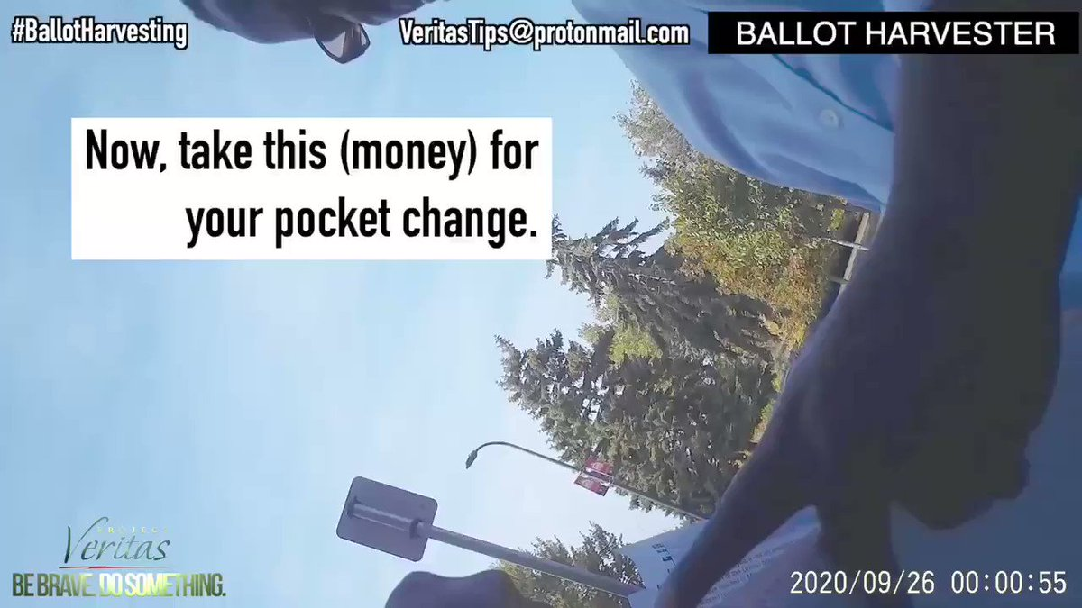 MUST WATCH! Democrats #CashForBallots scheme exposed. https://t.co/MxhhjaHRKr