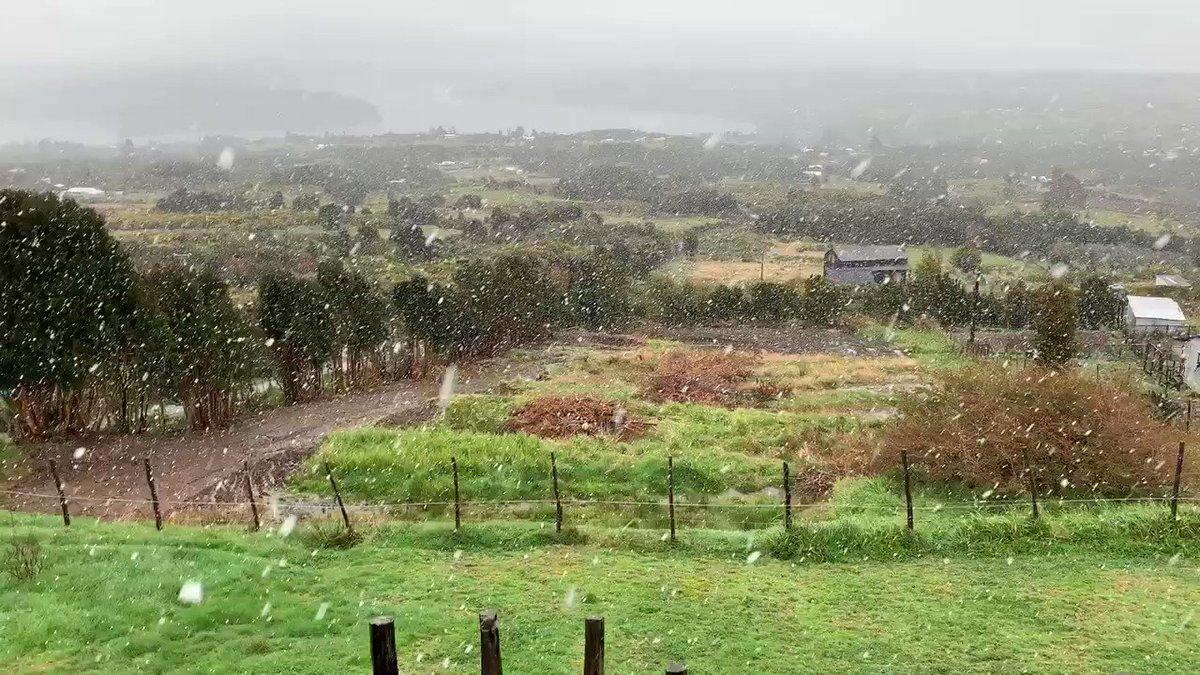 RT @AlvaroMolinaJCL (12:15 HRS) #CHILOÉ (@GABORPP) Se Registra Caída de Nieve en Sectores Cordilleranos de La Isla Grande de Chiloé