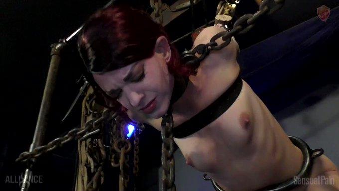 Postulating Pain #BDSMporn #Device #Pain #Pleasure #Suffering #SteelCollar #AbigailDupree #Bondage #Fucking