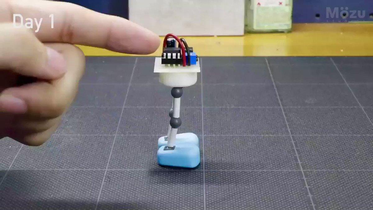4ヶ月ほどかけて試行錯誤していた、自律型こびとロボット「Maru」の開発に成功しました!  二足歩行はもちろん、自分で考えて行動し、経験をもとに成長していくことができます。   …少々おっちょこちょいですが。