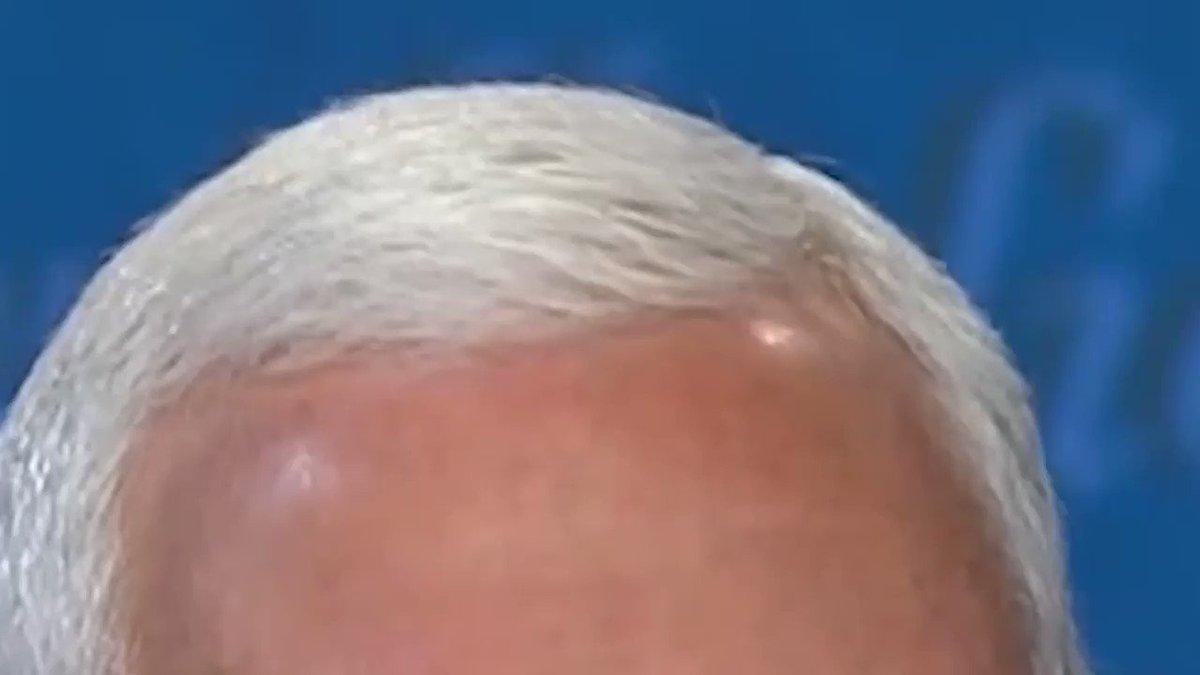Replying to @bubbaprog: Total time a fly sat on Mike Pence's head: two minutes