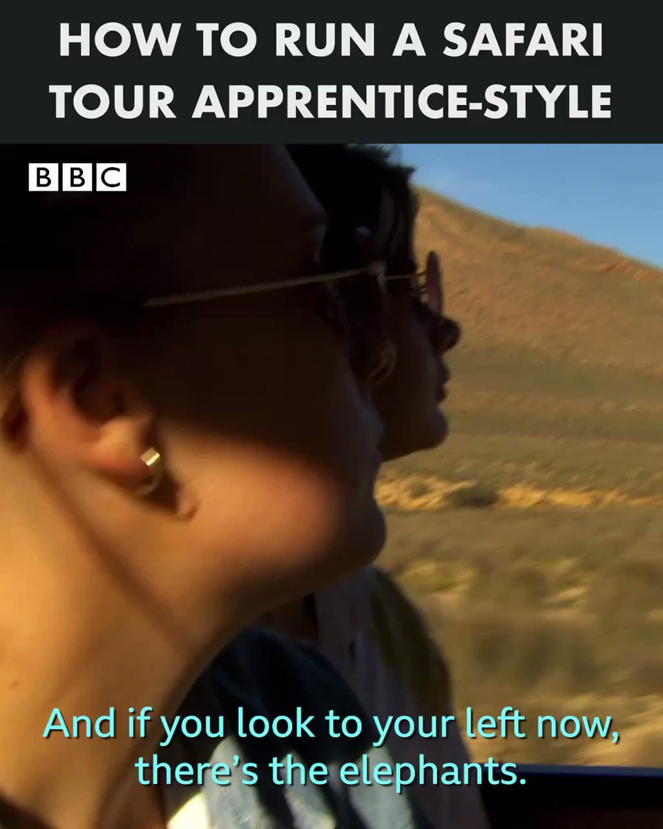 The safari tour that didn't quite go to plan 🙈  The Apprentice Best Bits | Streaming Now | @BBCiPlayer https://t.co/rhhwX89Sx0