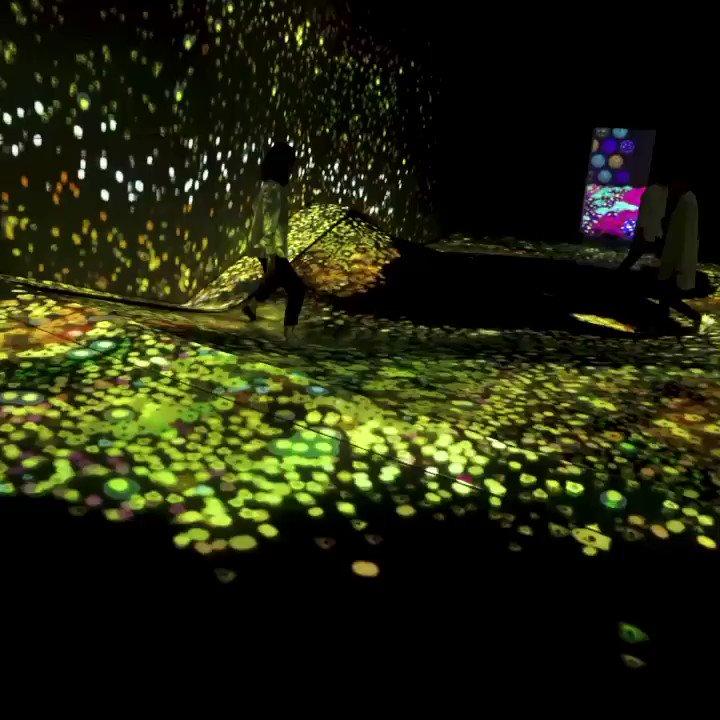 This Interactive Room is a Creative Medium  #art #artist #EmergingTech #ai #innovation #ui #design #ai #creative #artistsoftwitter #ioe #ux #teacher #education #future #futuretech #cool #museum #tech MT @teamLab_net #FridayThoughts #creativity