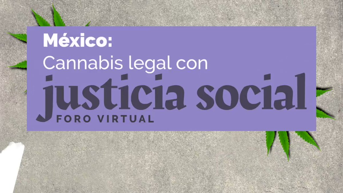 Image for the Tweet beginning: En este video, Lisa Sánchez