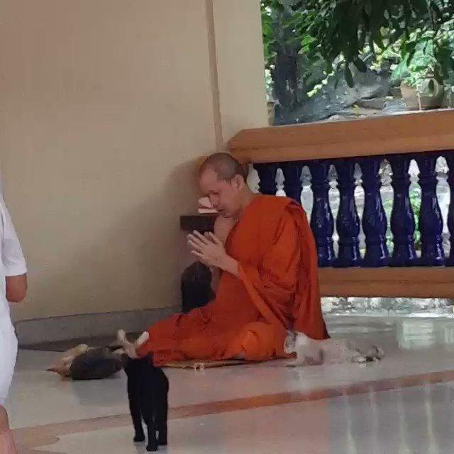 この坊さん、完全に煩悩を消し去っている…より。世界最大の仏塔がある、タイ中部のプラ・パトム・チェディにて
