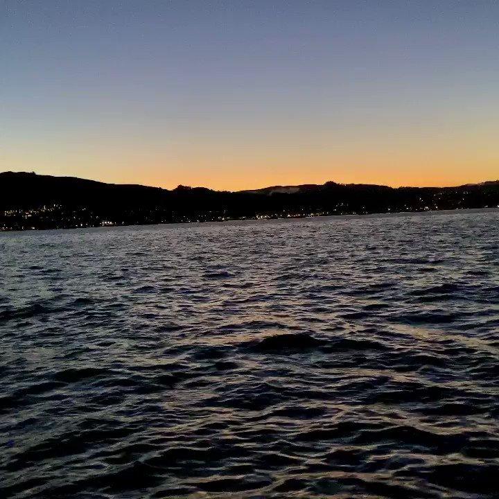 Image for the Tweet beginning: City lights sunset/night swim... meteor