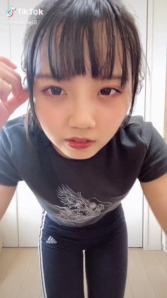 TikTok は美女の宝庫です🥰  TikTok ID ➡️@kaedehei8  可愛いなと思ったらRT・ファボでその子を有名にしちゃおう♪   #美女 #美少女 #ティックトッカー #TikTok #cute #japanese #hot #asian https://t.co/z7UJwb5eOo