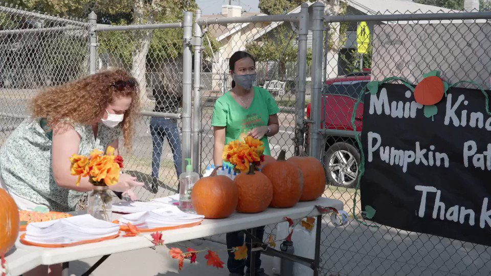 Image for the Tweet beginning: The Wild Pumpkin Patch donated