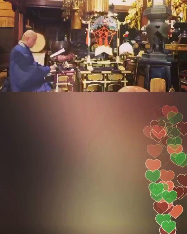10月22日 YouTube 晩勤行 LIVE配信 お願い事をお送り下さい  @YouTubeより@George_Tom_Yさんのライブ放送をチェックしてみましょう: 10月22日 【#夕勤行 #晩のお勤め あなたの願いを読み上げ】⭐寶泉寺公式