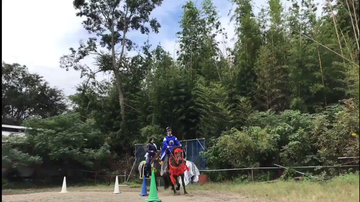 青江くんで弓を引けたのが凄い嬉しくて馬と並走して撮ってくれた動画が最高すぎて……みて……😭✨✨動画/柏さん(@ace12mh12th )