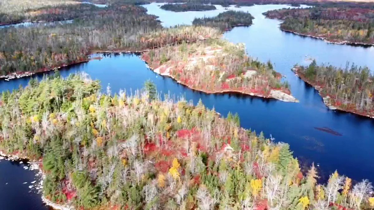 This week, our team was out exploring Blue Mountain - Birch Cove Lakes. Check out this video taken with our drone of this spectacular urban wilderness park in the fall colours. https://t.co/UU7Hdwmvoo