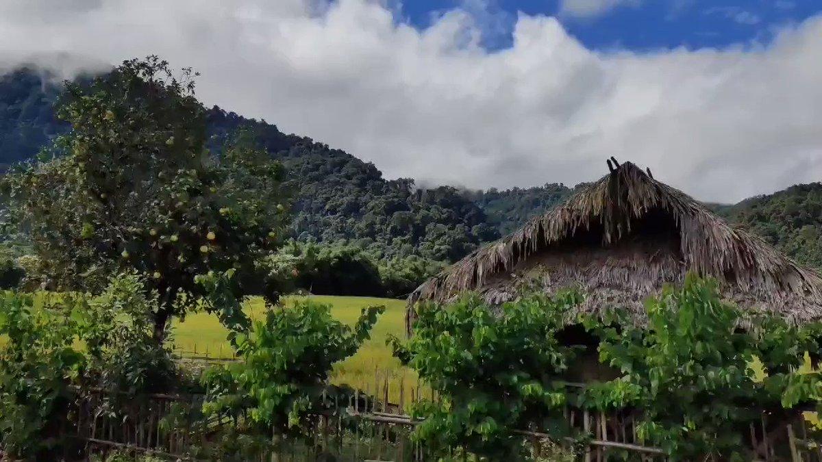 Explore the mesmerising view of Siang district that will take you to the beautiful town of Boleng in Arunachal Pradesh. #DekhoApnaDesh  @ArunachalTsm