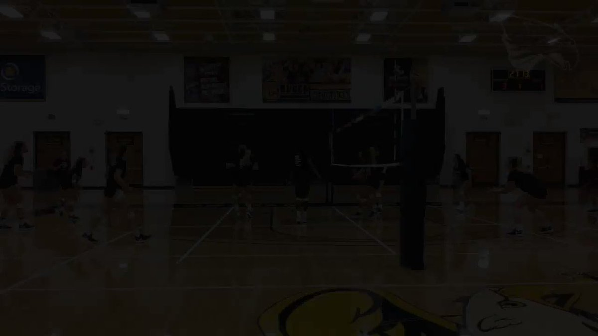 """Our @intensemilk """"Play of the Week"""" rewind looks back at @GriffVolleyball and their effort to record a point during their sweep of St. Francis (Pa.) at the UB Blue and White Classic last September https://t.co/FUp4aYLJn1"""