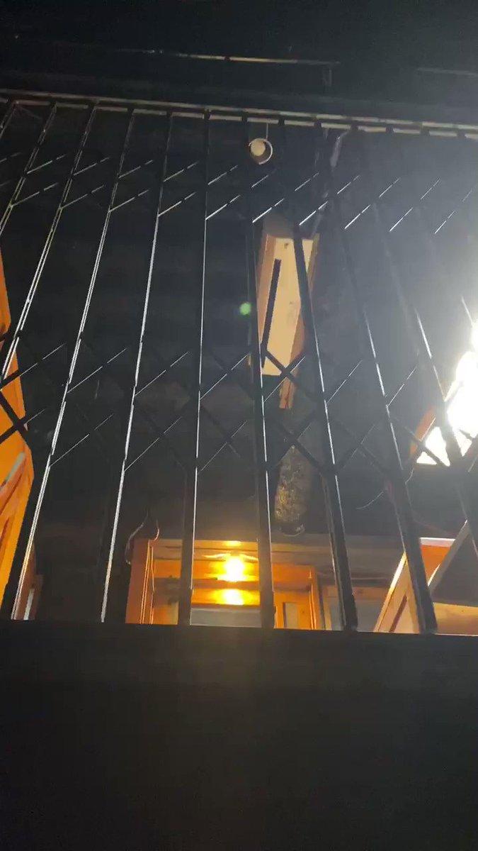 ホラーゲームとかディズニーのアトラクションみたいなエレベーターのスタジオで楽しかった!
