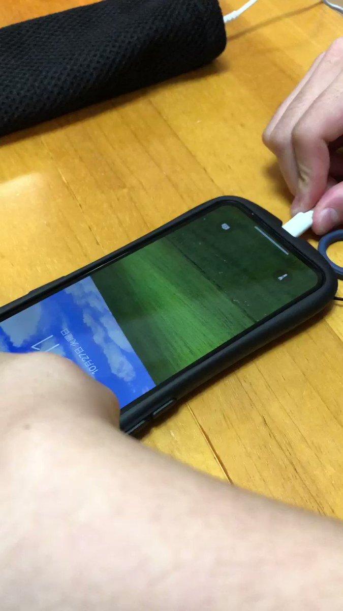 ウチの子がiPhoneの設定を弄って、充電を始めた時の音をWindowsXPの起動音に、充電終了をWindowsXPの終了音に、壁紙をあの草原にしてて、これにはジョブズも草葉の陰から歯ぎしり
