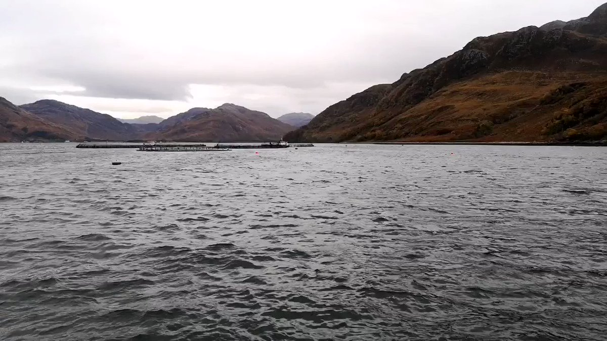Stunning day's filming with a fantastic @MowiScotlandLtd team. #Scotland