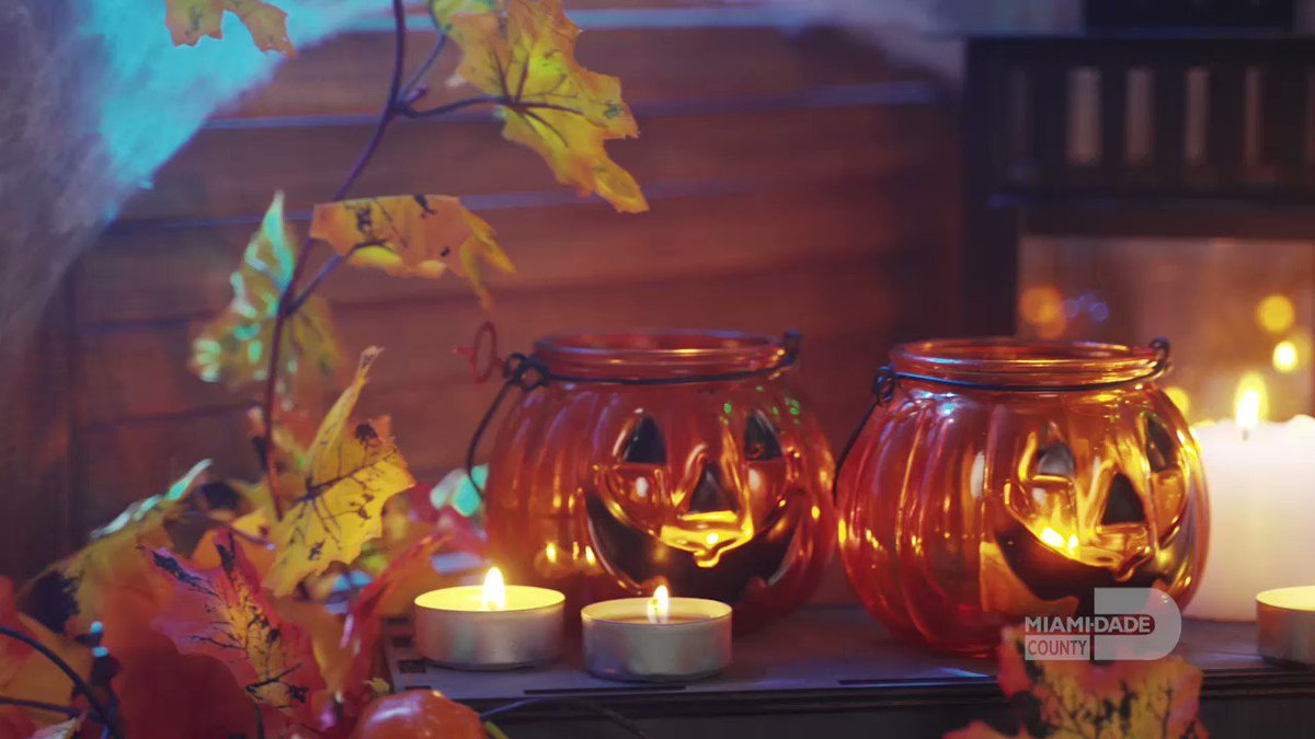 Visiting Miami this weekend for Halloween? Here are some tips to have a scary but safe time!