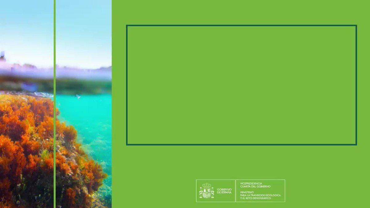 Twitter La Moncloa. El objetivo es restaurar ecosistemas da...: abre ventana nueva