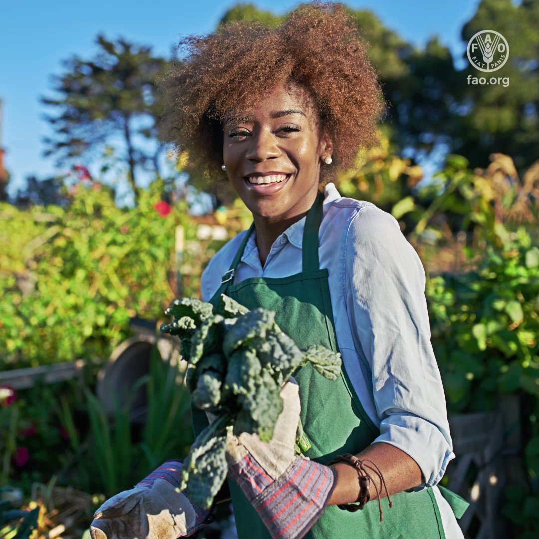 Every day lets thank our #FoodHeroes who, no matter the circumstances, continue to provide food to their communities and beyond. Here are their stories 👉bit.ly/3imHCOJ